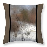 Steamy Window Throw Pillow