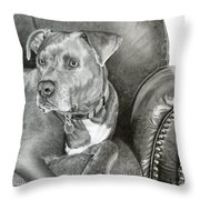 Leather And Steel Throw Pillow