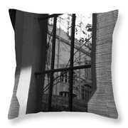 Steel Window Throw Pillow
