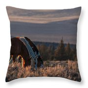 Steens Sundown Throw Pillow