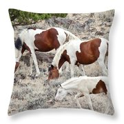 Steens Wild Paints Throw Pillow