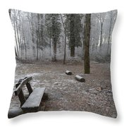 Steep And Frost - 3 Throw Pillow