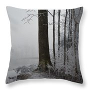 Steep And Frost Throw Pillow