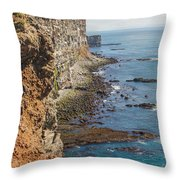 Steep Coast In Iceland Throw Pillow