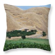 Steep Golf Cart Path Throw Pillow