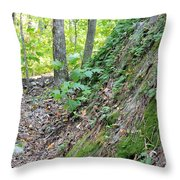 Steep Incline Around The Mountain Throw Pillow