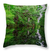 Steinhatchee River Throw Pillow