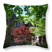 Steinheim Of Au Throw Pillow