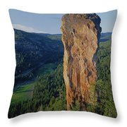1a5719 Steins Pillar Oregon Throw Pillow