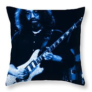 Stella Blue At Winterland Throw Pillow