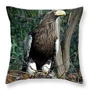 Stellers Sea Eagle Throw Pillow