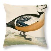 Stellers Western Duck Throw Pillow