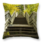 Step Trail In Woods 10 Throw Pillow