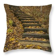 Step Trail In Woods 11 Throw Pillow