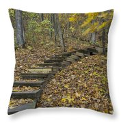 Step Trail In Woods 12 Throw Pillow