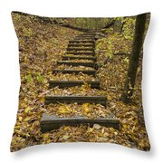 Step Trail In Woods 14 Throw Pillow