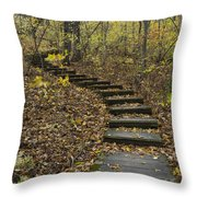 Step Trail In Woods 15 Throw Pillow