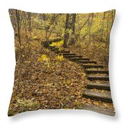 Step Trail In Woods 16 Throw Pillow