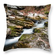 Stepping Down The River Throw Pillow