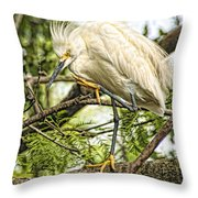 Stepping Out Throw Pillow
