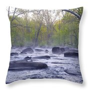Stepping Stones Throw Pillow by Bill Cannon
