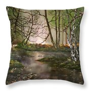 Stepping Stones On Cannock Chase Throw Pillow