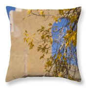 Steps And Fall Jerome Throw Pillow