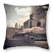 Steps In A City Park Throw Pillow