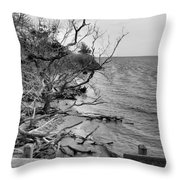 Steps To Nowhere Throw Pillow