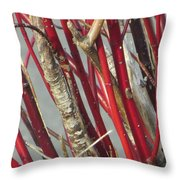 Sterling Stems Throw Pillow