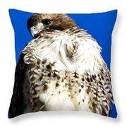 Stern Throw Pillow