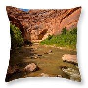 Stevens Arch - Escalante River - Utah Throw Pillow