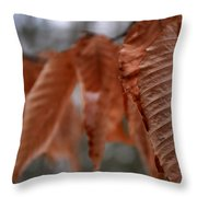 Sticking It Out Throw Pillow
