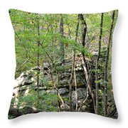 Sticks And Stones Along The Way Throw Pillow