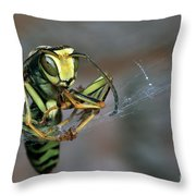 Sticky Situation Throw Pillow