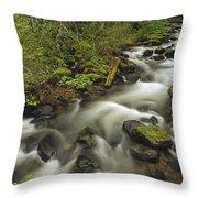 Still Creek Mt Hoodoregon Throw Pillow