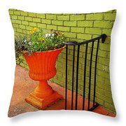 Still Life In Colorful Alley  Throw Pillow