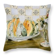 Still Life Of A Melon And A Vase Of Flowers Throw Pillow