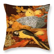 Still Life With Fruit And Macaws, 1622 Throw Pillow