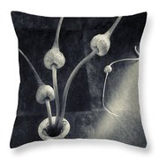 Still Life With  Garlic Throw Pillow