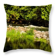 Still Pool And Fast River Throw Pillow