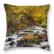 Still River Rapids Throw Pillow