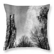 Still Standing After The Storm Throw Pillow