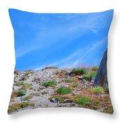 Still Standing. Near Mount St. Helens 2012 Throw Pillow