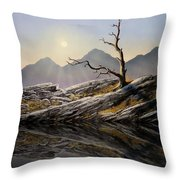Still Standing Reflections Throw Pillow