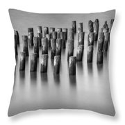 Still Waters Bw Throw Pillow
