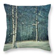 Still Winter Throw Pillow by Priska Wettstein