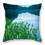 Stillness On Schreeder Pond Throw Pillow