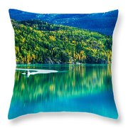 Stillness On The Kenai Throw Pillow