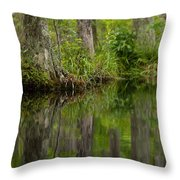 Stillness Swamp Throw Pillow